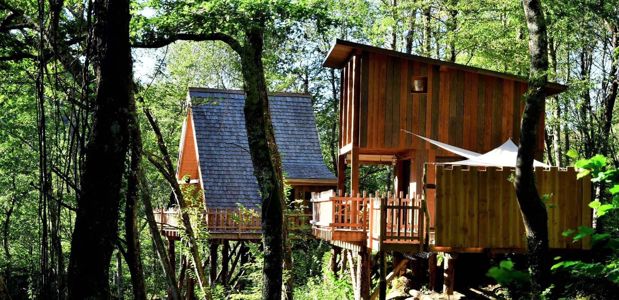 huts spas perched forest pyrenees