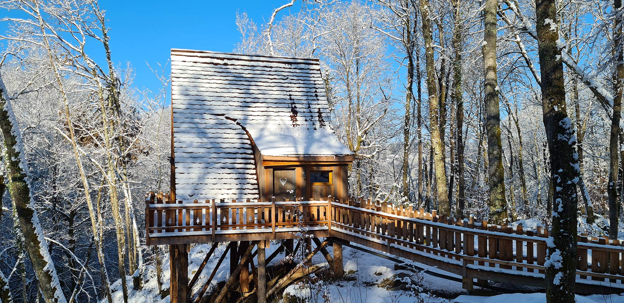 unusual accommodation forest refuge